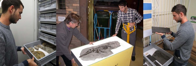 Dean Lomax Doncaster Museum and Art Gallery ammonites ichthyosaur Nigel Larkin Devonian fish